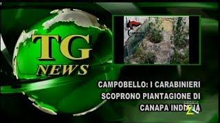 Tg News 07 Ottobre 2017