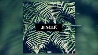 DUkE - JUNGLE 🌴 (AUDIO)