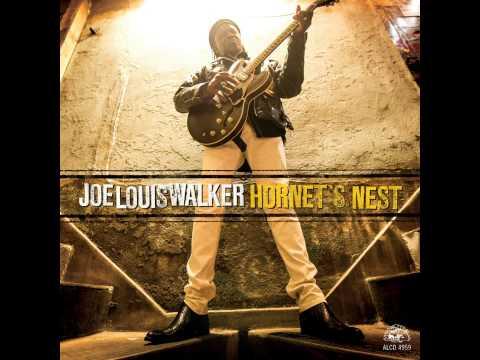 joe-louis-walker-as-the-sun-goes-down-hornets-nest-2014-fabtbirds-blues