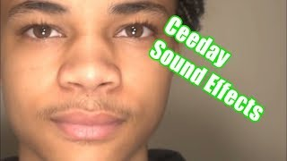 Ceeday Sound Effects #1