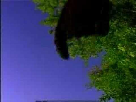 Luftwaffe de Flashlight Brown Letra y Video