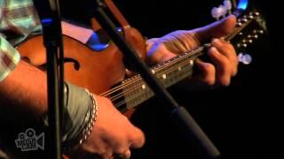 Steve Earle - Little Emperor (Live in Sydney) | Moshcam