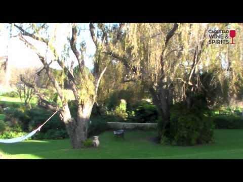 Acara Stellenbosch