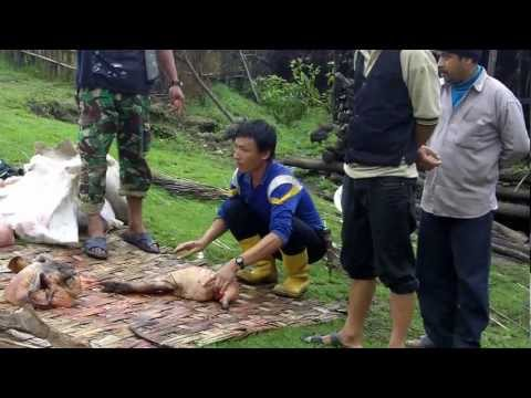 Fresh Kill For Dinner Sean Burch Expedition Nepal CNN BBC