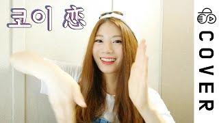 코이 (Koi, 恋) Korean Ver.┃Cover by Raon Lee