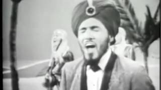 Wooly Bully - Sam the Sham & The Pharaohs