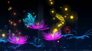 Lotus Flower Blooming Video Background With Butterfly