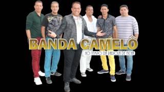 banda camelô musica bêbado liso e apaixonado
