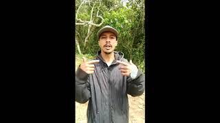 MC Teko - Me Julgam Como Vagabundo (2k17)