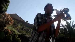 Burn (Ellie Goulding Cover) Best Sax Version
