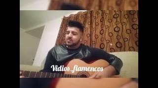 "Antonio Muñoz 2017 ""Me siento solo"" |VIDIOS FLAMENCOS"