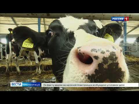 В селе Красногорский заложили необычную капсулу времени