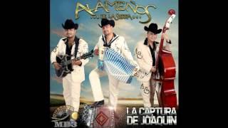 Los Alameños De La Sierra - 11 Traficante Bondadoso (Álbum 2014)