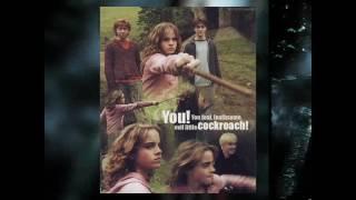 Harry potter canción Sía Move Your Body