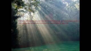 E a Vida que é divina e eterna se manifestou - cânticos espirituais