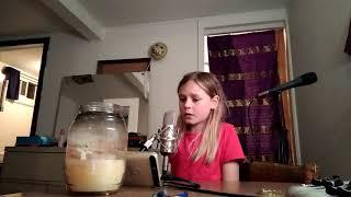 Fight song Rachel Platten Mandolin vocal cords