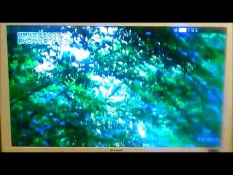 Японская передача об Украине (Ukraine on Japanese TV)Tonnel of Love part 1