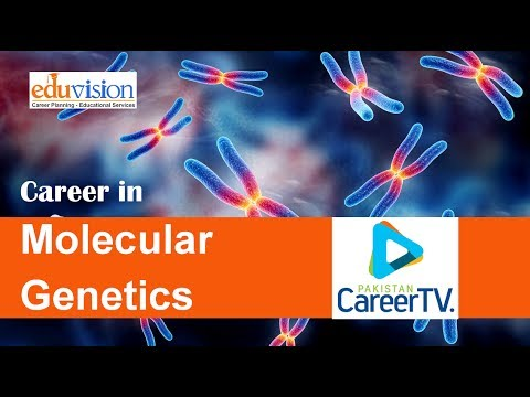Career in Molecular Genetics