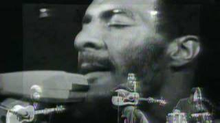 Richie Havens - Lady Madonna