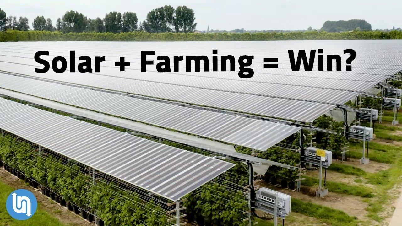Solar Panels Plus Farming