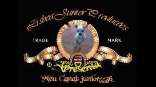 Abertura para filmes - Cãozinho Dançarino - Adocica1