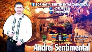 ANDREI SENTIMENTAL - CANTA CUCUL BATA-L VINA