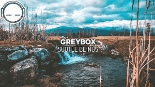 Greybox - Subtle Beings ~ Lounge chill hop music