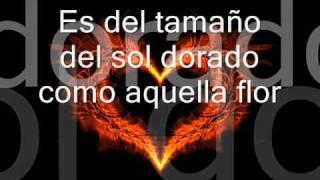 Mi Corazón - David Bustamante (Letra)