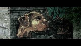 Galeria - Płynę (Official Video)