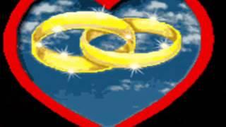 ese par de anillos