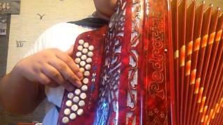 musica apita o comboio na concertina