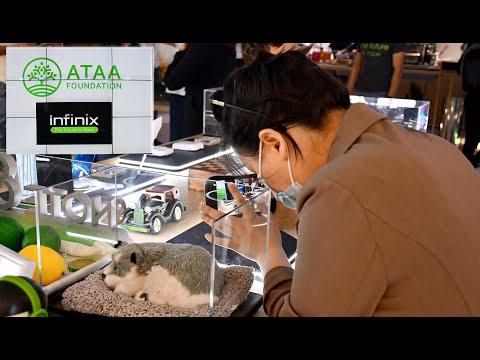 Video : La Fondation Ataa, Infinix et Joseph Ouechen mobilisés et solidaires en faveur des démunis