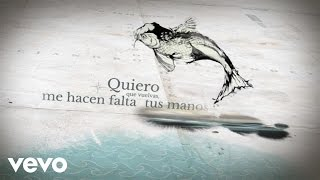 Alejandro Fernández - Quiero Que Vuelvas (Artistic Video)