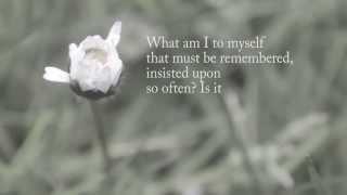 """The Rain"" -- Robert Creeley"