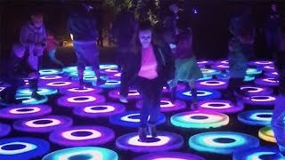 LA's magic forest lights up at night