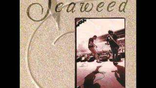 Seaweed - Go Your Own Way