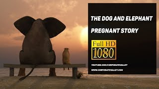 The Pregnant Elephant Story