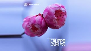 Calippo - Loving You (Radio Edit)