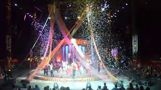 Flighted Camelot Macaws | Greatest Show on Earth