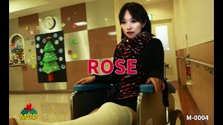 LLC cast Rose Accident