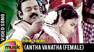Antha Vanatha Pola Video Song | Female Version | Chinna Gounder Movie | Vijayakanth | Ilayaraja