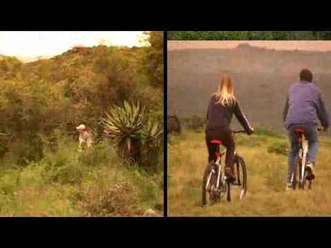 Kariega Game Park – Activities – South Africa