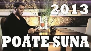 NICOLAE GUTA POATE SUNA ORIGINAL SUPER HIT 2013