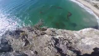 El Morro Cliff Jump - To Be Continued (JoJo)