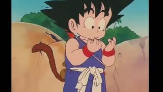 Primer Kamehameha de Goku / Roshi pide a Goku que entrene con él