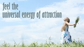 [LOA] Manifestation Miracle Review With Law of Attraction and Manifesting Wealth