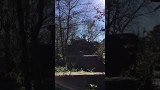 Visit Atlanta Zoo - Roaring with Lions
