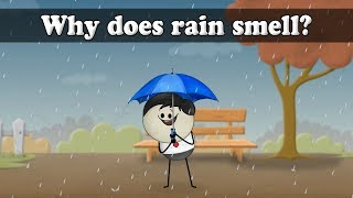 Why does rain smell? | It's AumSum Time