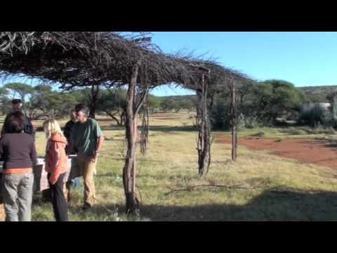 Game Drive – Lunch.m4v