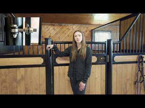 women standing at horse gate